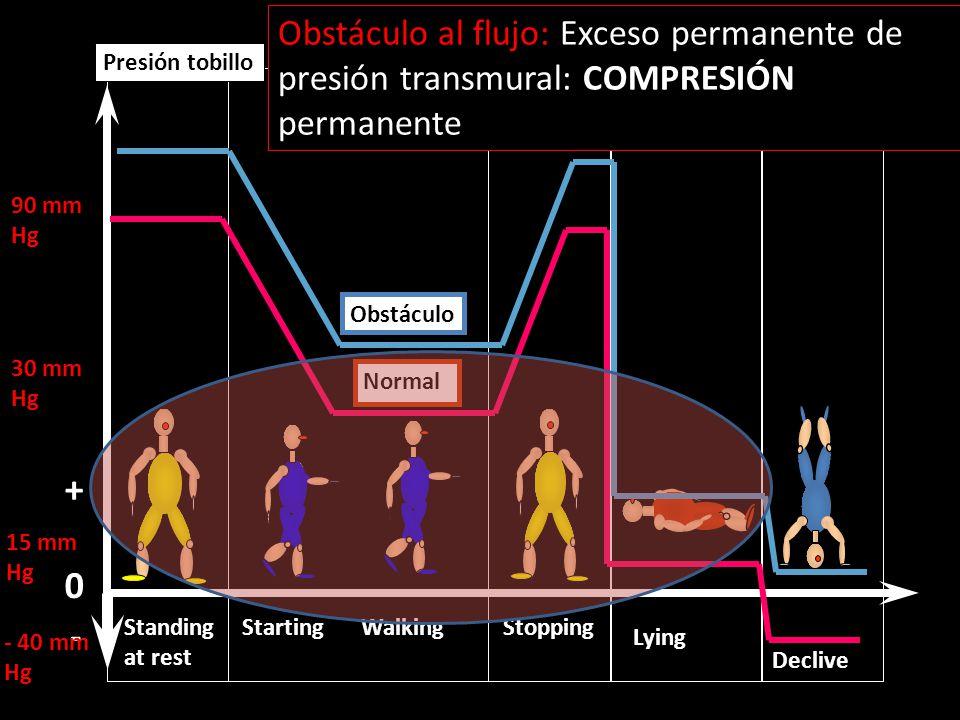 Obstáculo al flujo: Exceso permanente de presión transmural: COMPRESIÓN permanente
