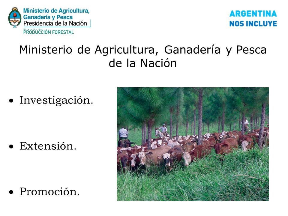 Ministerio de agricultura ganader a y pesca ppt descargar for Ministerio de ganaderia