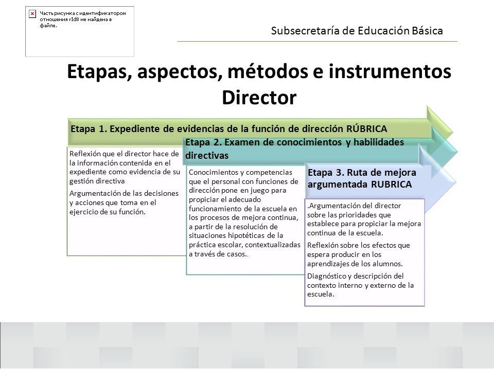 Etapas, aspectos, métodos e instrumentos Director