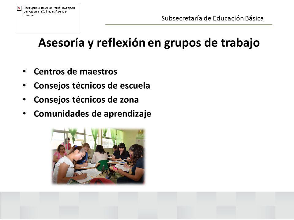Asesoría y reflexión en grupos de trabajo