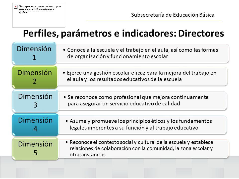 Perfiles, parámetros e indicadores: Directores