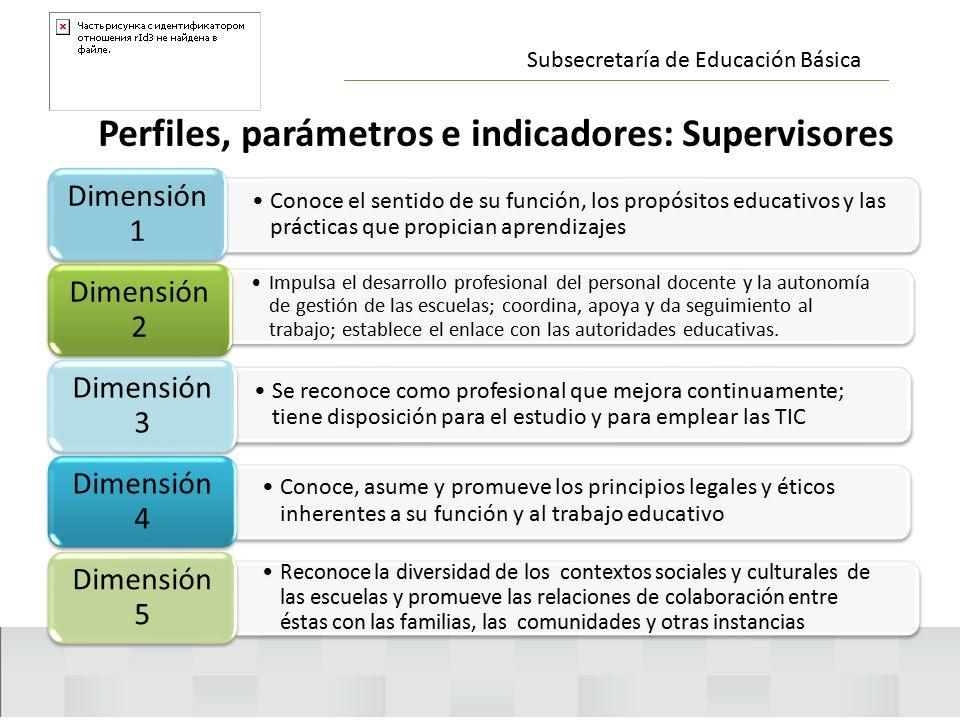 Perfiles, parámetros e indicadores: Supervisores