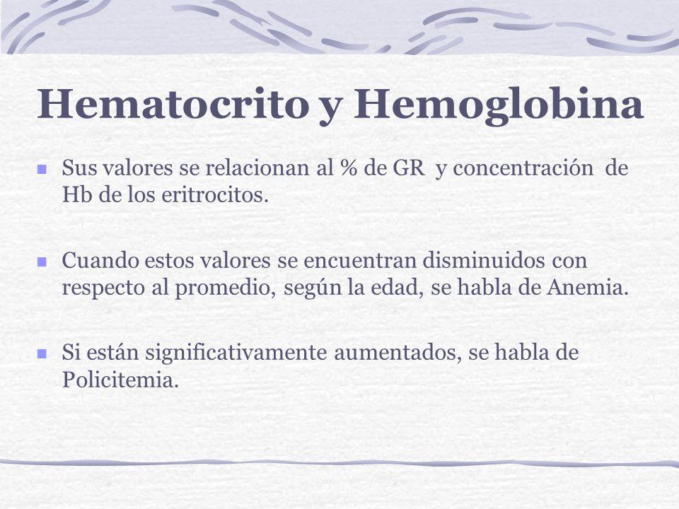 Hematocrito y Hemoglobina