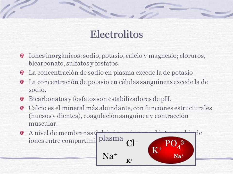 Electrolitos Cl- PO43- K+ Na+ plasma