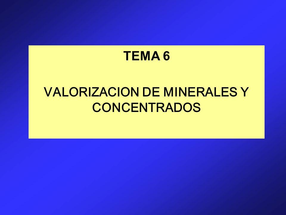 TEMA 6 VALORIZACION DE MINERALES Y CONCENTRADOS