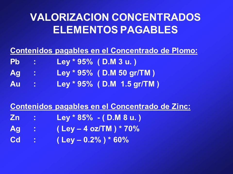 VALORIZACION CONCENTRADOS ELEMENTOS PAGABLES