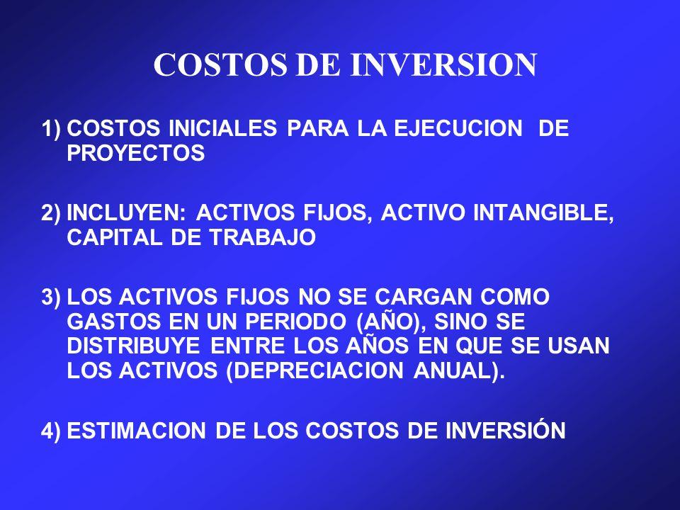 COSTOS DE INVERSION 1) COSTOS INICIALES PARA LA EJECUCION DE PROYECTOS