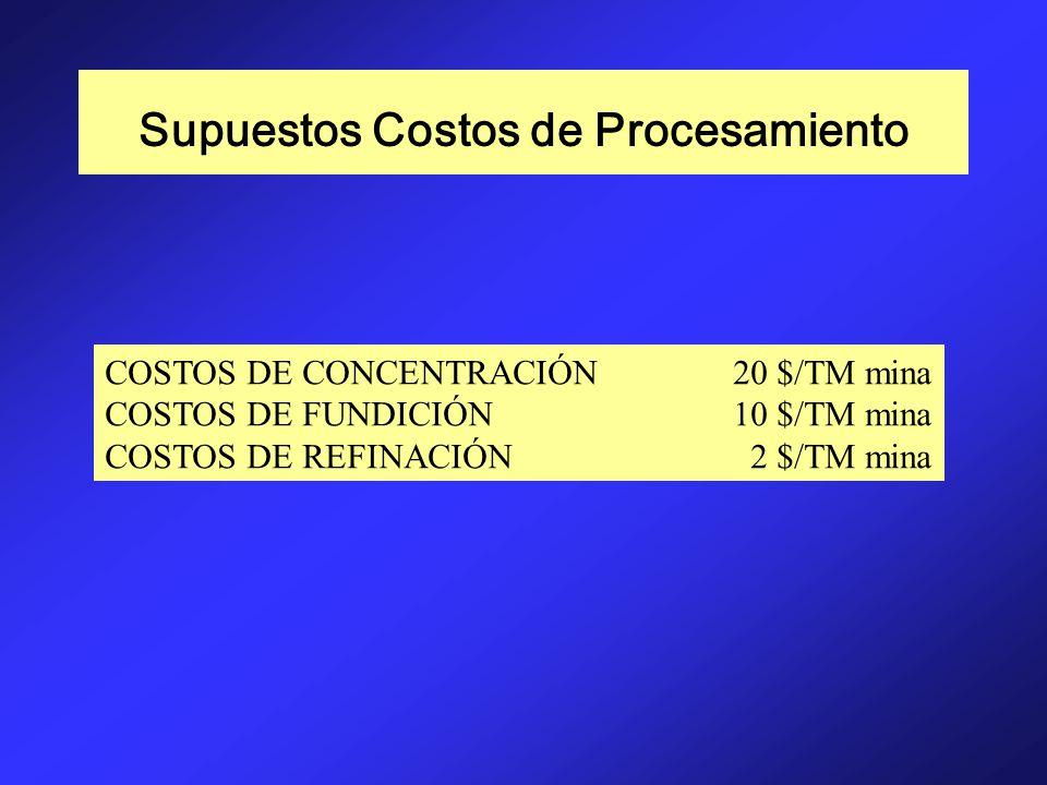Supuestos Costos de Procesamiento