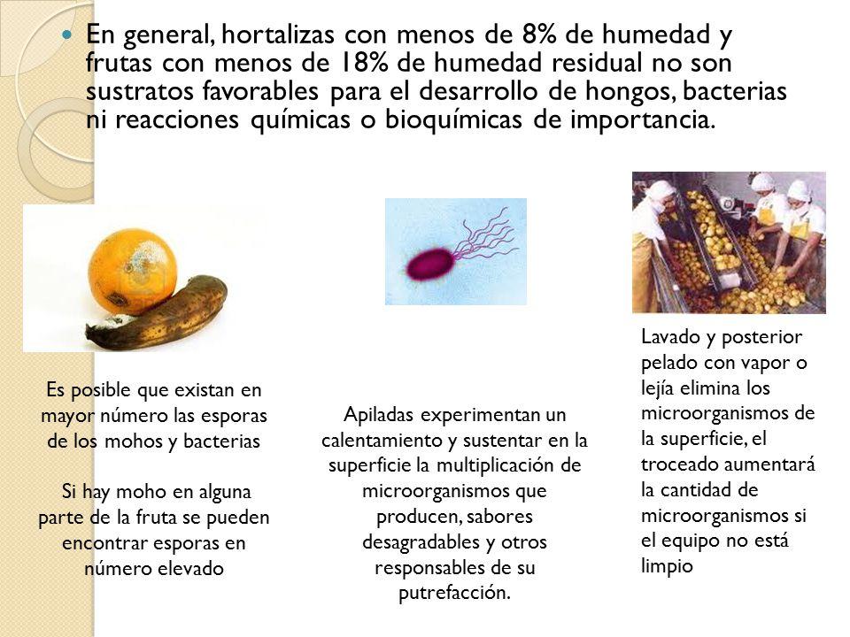 Conservaci n de alimentos por secado ppt video online - Lejia para los hongos ...