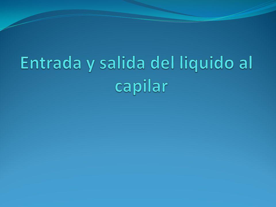 Entrada y salida del liquido al capilar