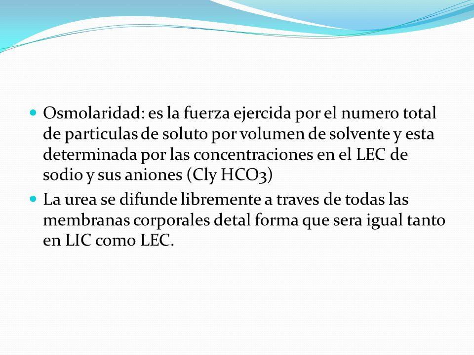 Osmolaridad: es la fuerza ejercida por el numero total de particulas de soluto por volumen de solvente y esta determinada por las concentraciones en el LEC de sodio y sus aniones (Cly HCO3)