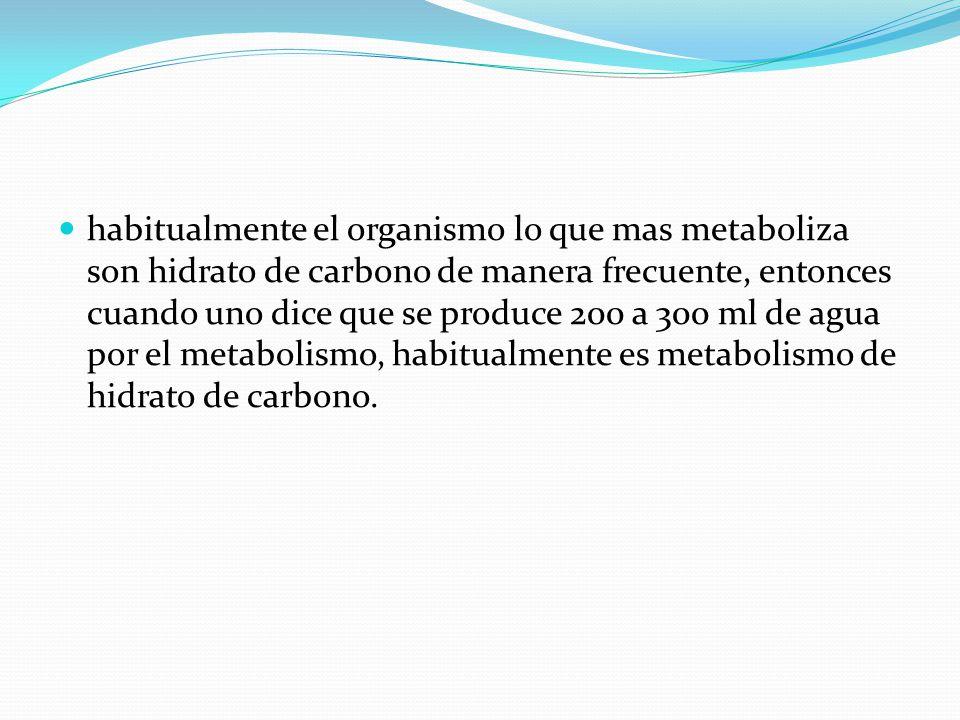 habitualmente el organismo lo que mas metaboliza son hidrato de carbono de manera frecuente, entonces cuando uno dice que se produce 200 a 300 ml de agua por el metabolismo, habitualmente es metabolismo de hidrato de carbono.