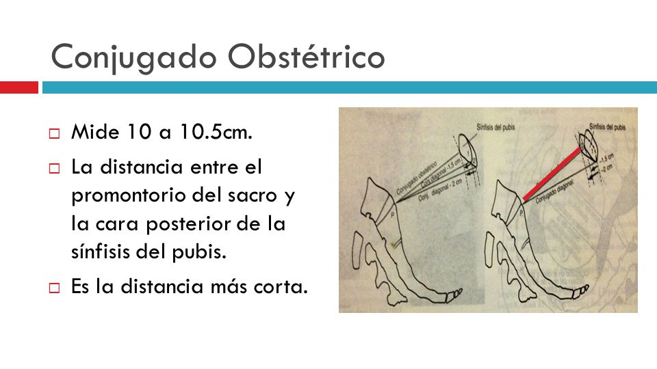 Conjugado Obstétrico Mide 10 a 10.5cm.