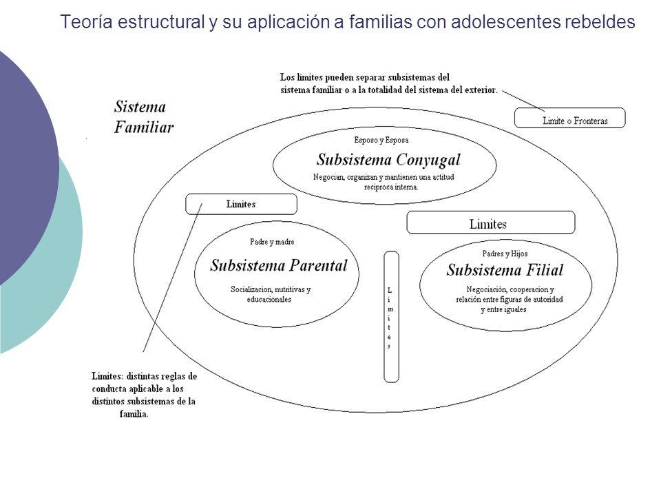 Teoría Estructural Y Su Aplicación A Familias Con