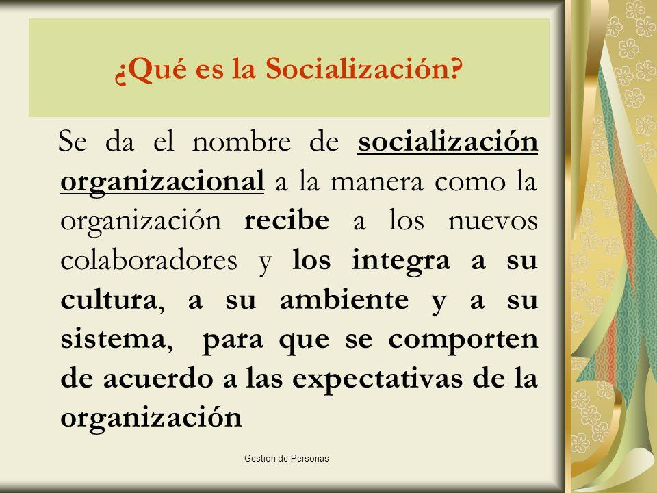 ¿Qué es la Socialización