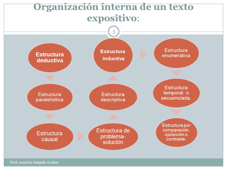 Organización interna de un texto expositivo: