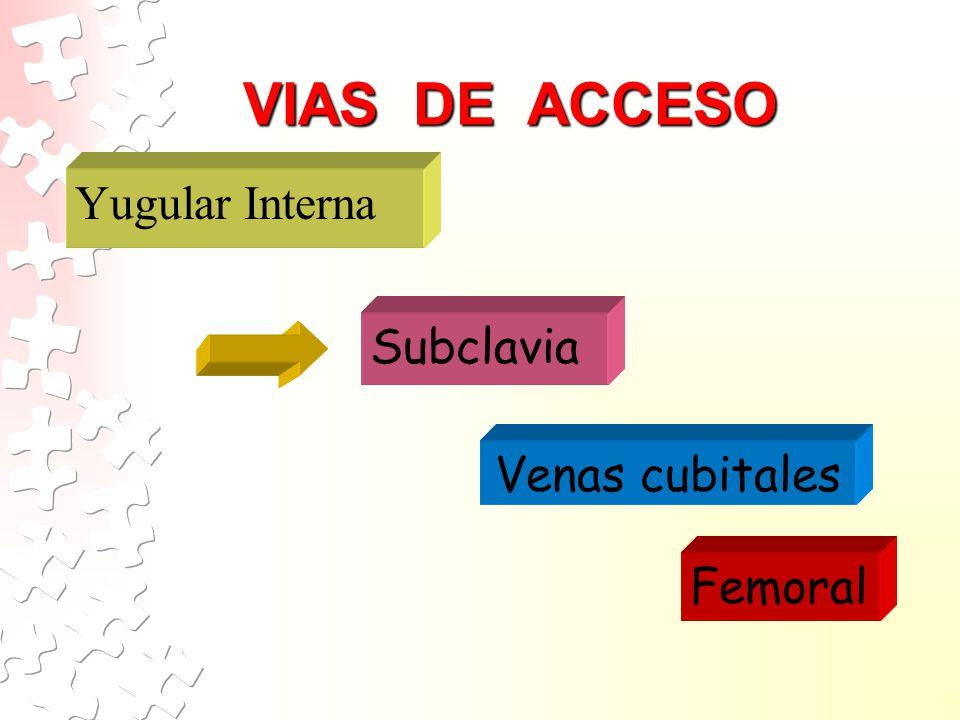 VIAS DE ACCESO Yugular Interna Subclavia Venas cubitales Femoral