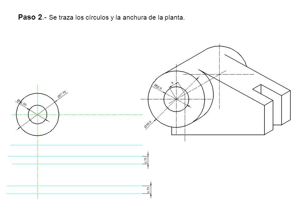 Paso 2.- Se traza los círculos y la anchura de la planta.