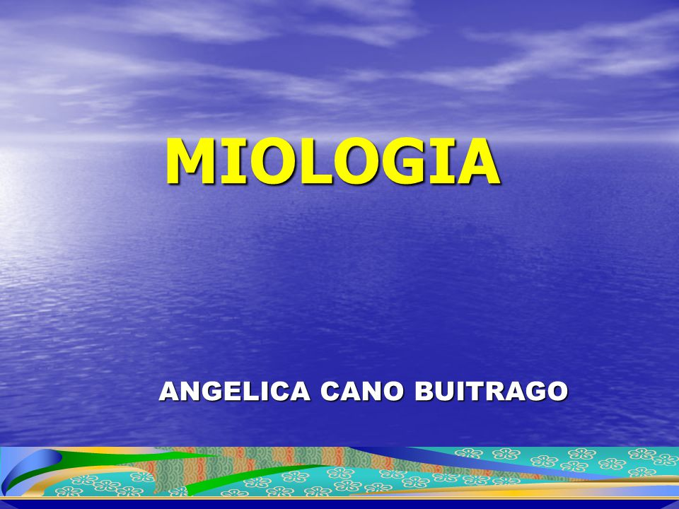ANGELICA CANO BUITRAGO