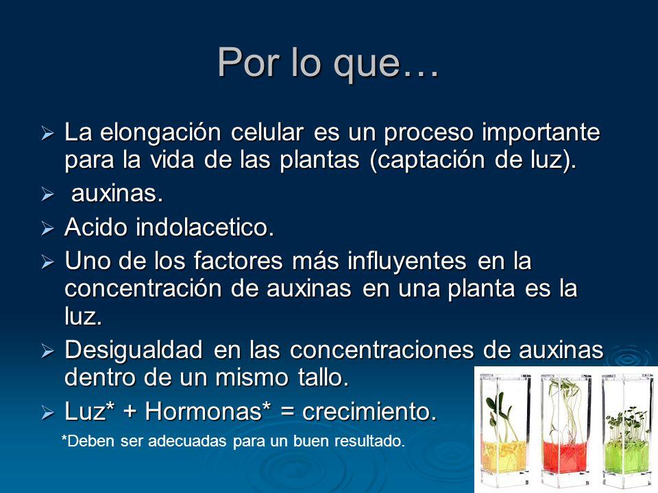 Por lo que… La elongación celular es un proceso importante para la vida de las plantas (captación de luz).