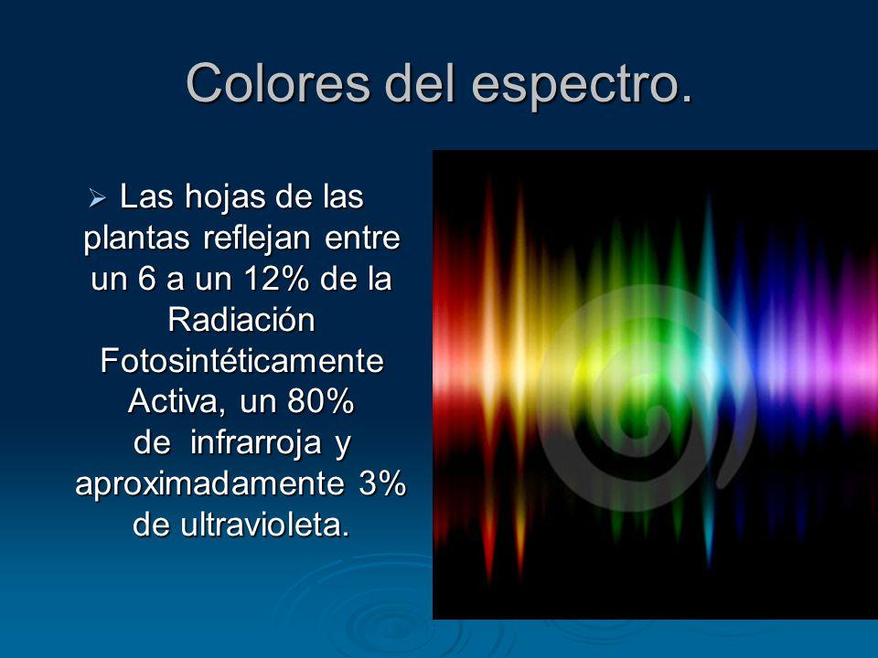 Colores del espectro.