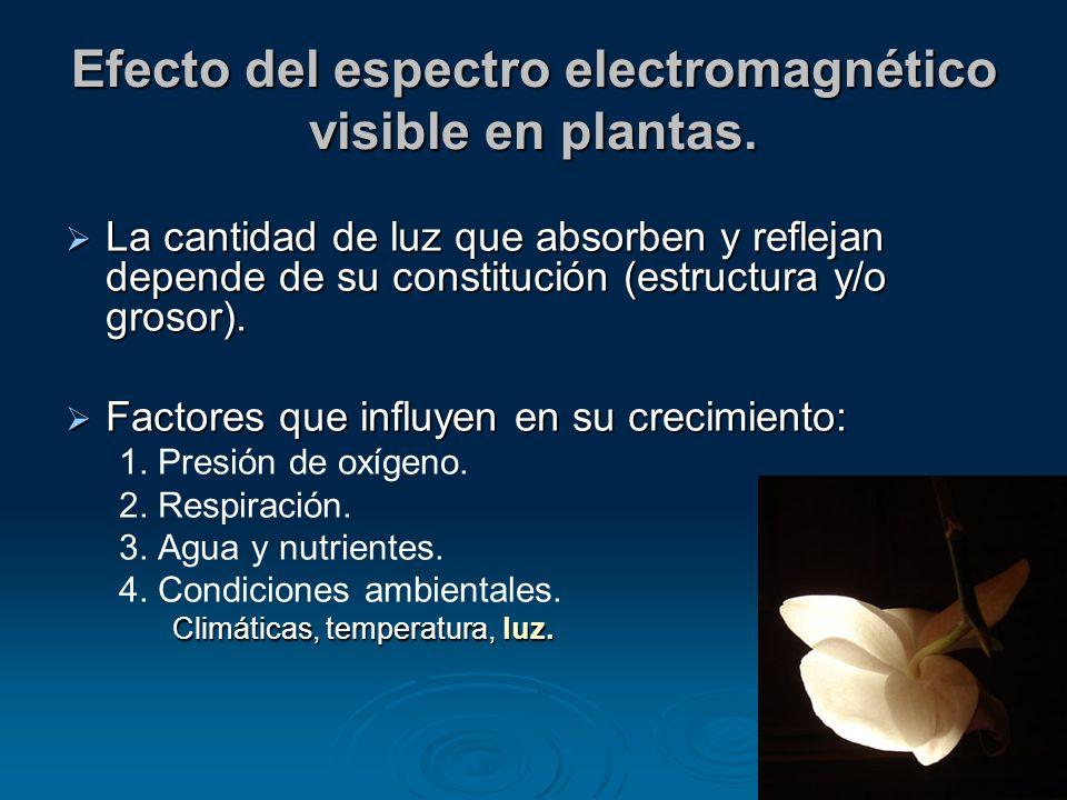 Efecto del espectro electromagnético visible en plantas.