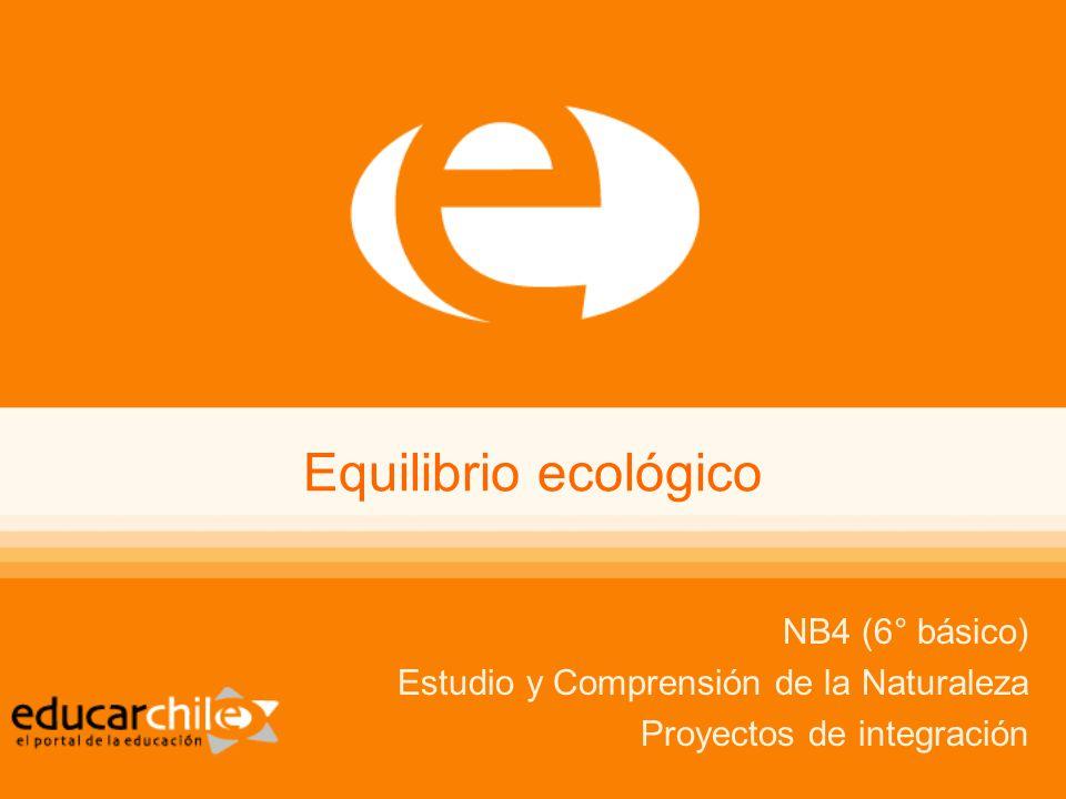 Equilibrio ecológico NB4 (6° básico)