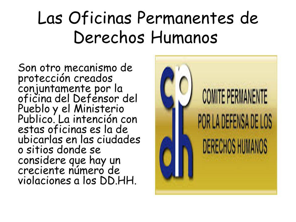 mecanismos de protecci n de los derechos humanos en