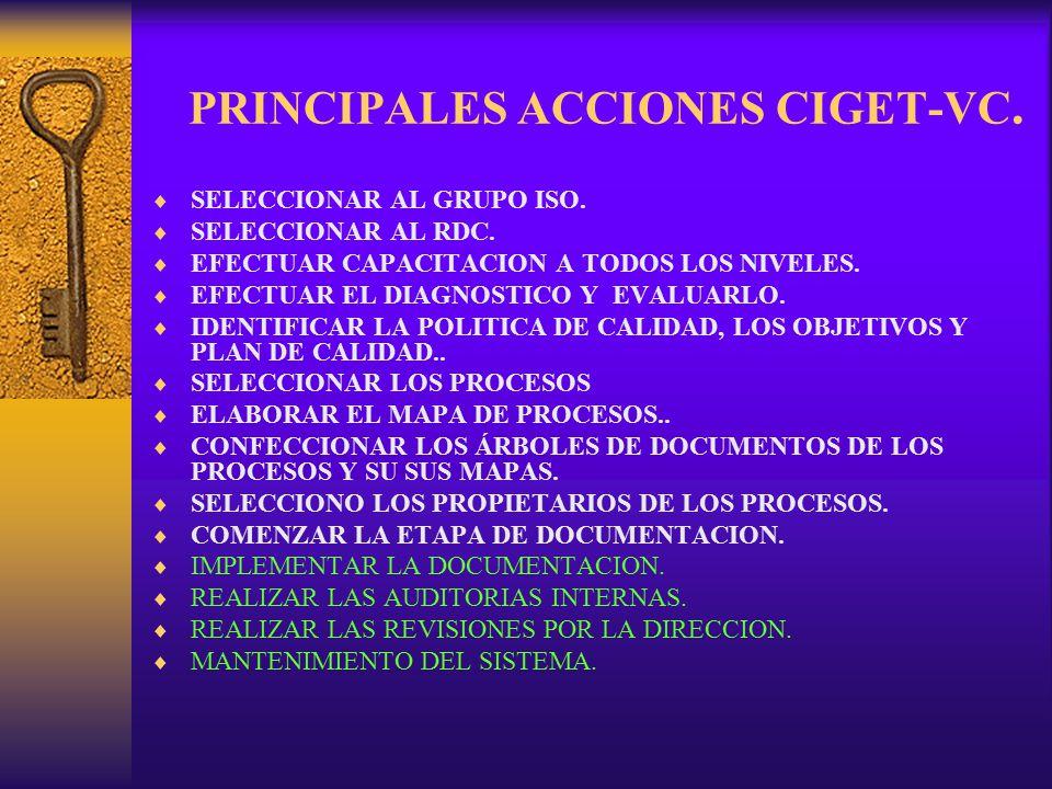 PRINCIPALES ACCIONES CIGET-VC.
