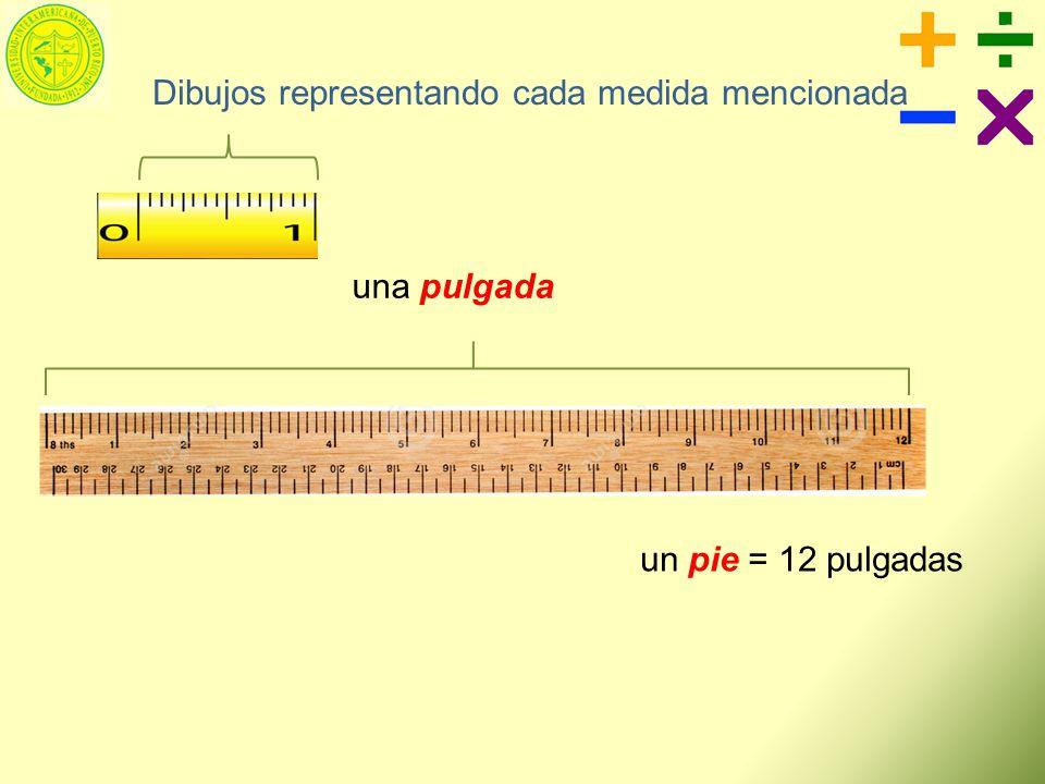 Dibujos representando cada medida mencionada
