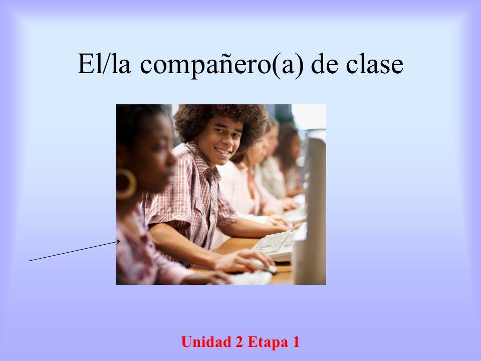 El/la compañero(a) de clase
