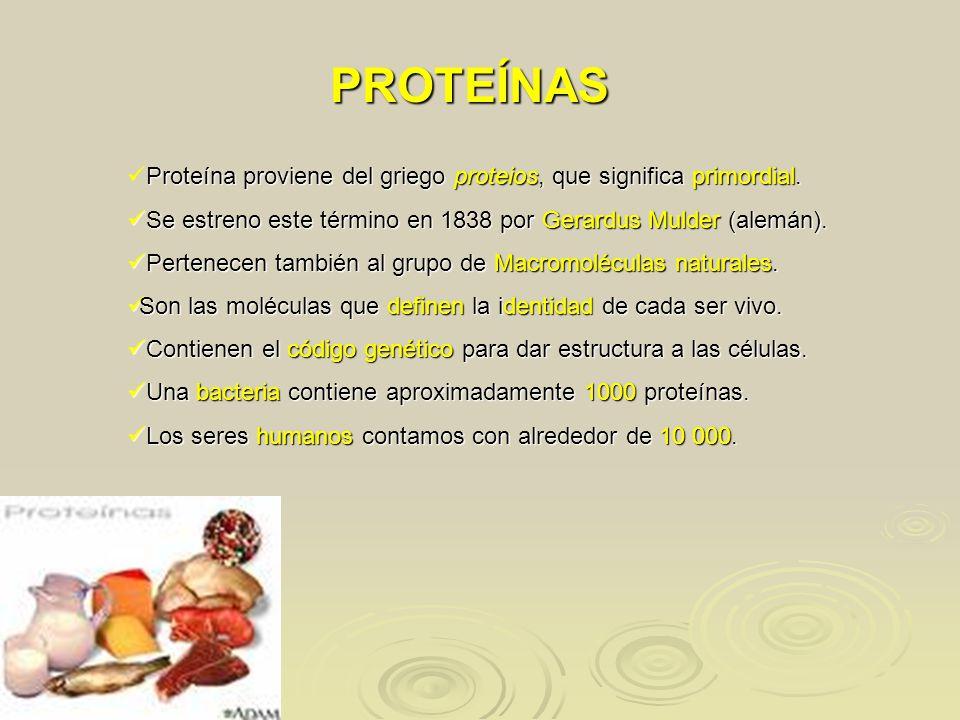 Q Significa Samoyedo PROTEÍNAS Prote&#...