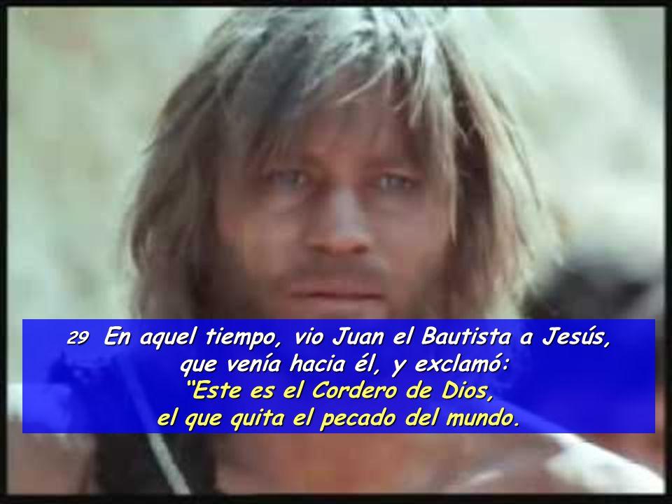 que venía hacia él, y exclamó: Este es el Cordero de Dios,