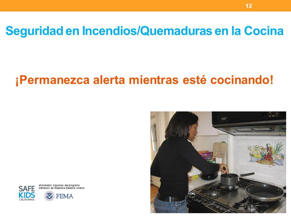 Seguridad en Incendios/Quemaduras en la Cocina