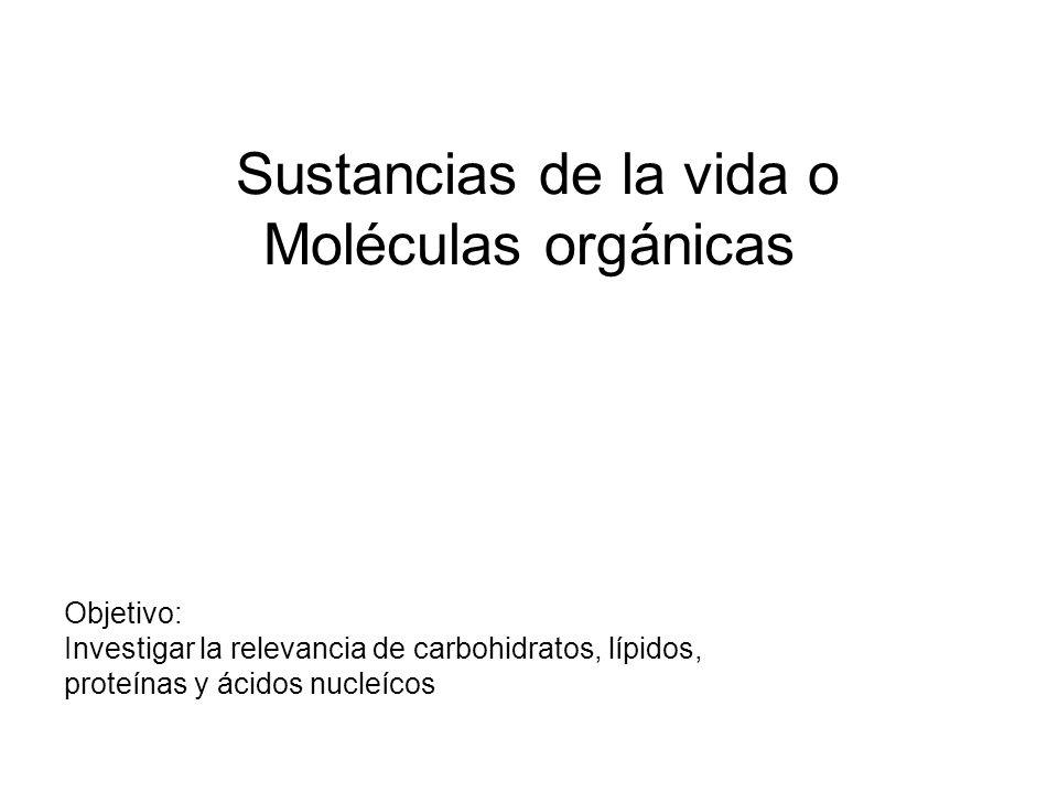 Sustancias De La Vida O Moléculas Orgánicas
