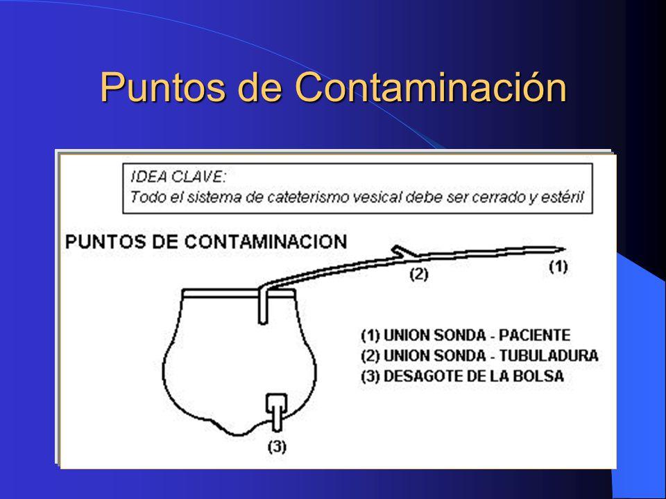 Puntos de Contaminación