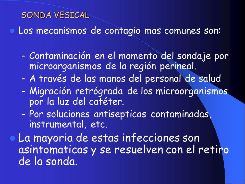 SONDA VESICAL Los mecanismos de contagio mas comunes son: Contaminación en el momento del sondaje por microorganismos de la región perineal.