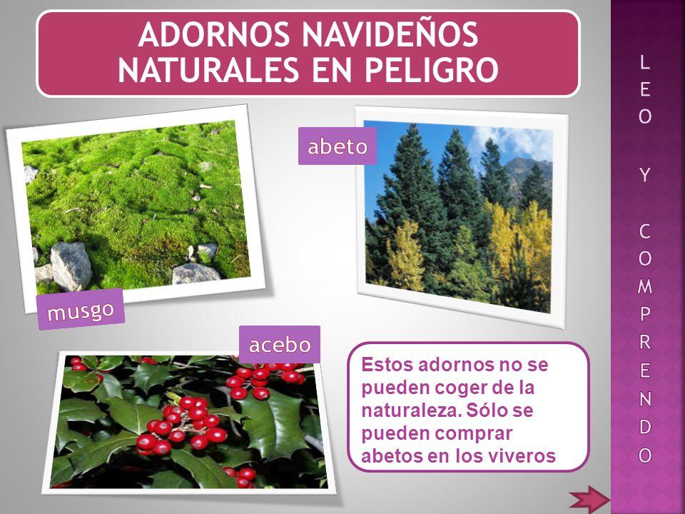 adornos navideos naturales