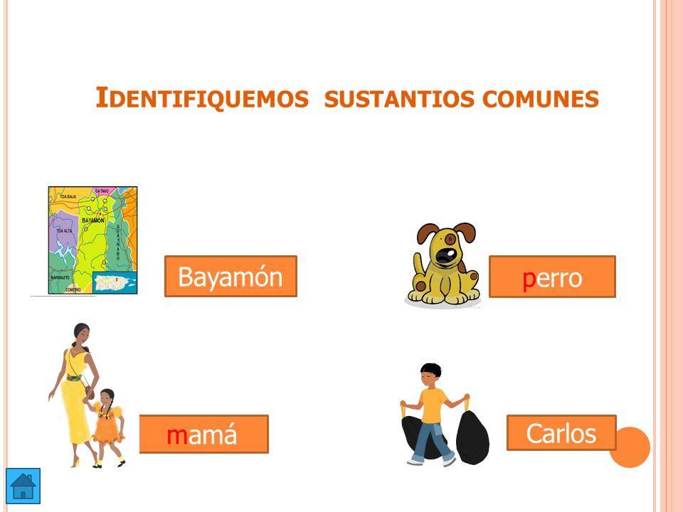 Identifiquemos sustantios comunes
