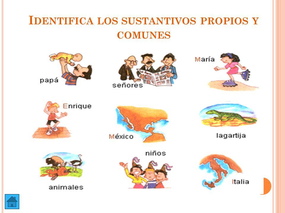 Identifica los sustantivos propios y comunes