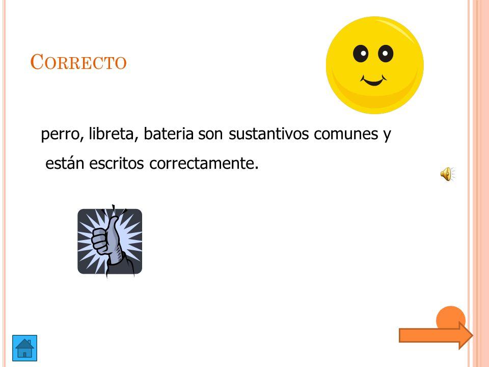 Correcto perro, libreta, bateria son sustantivos comunes y están escritos correctamente.