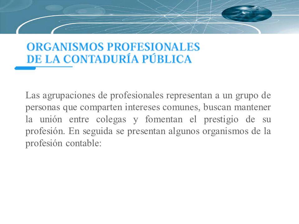 Las agrupaciones de profesionales representan a un grupo de personas que comparten intereses comunes, buscan mantener la unión entre colegas y fomentan el prestigio de su profesión.