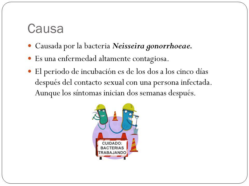Causa Causada por la bacteria Neisseira gonorrhoeae.