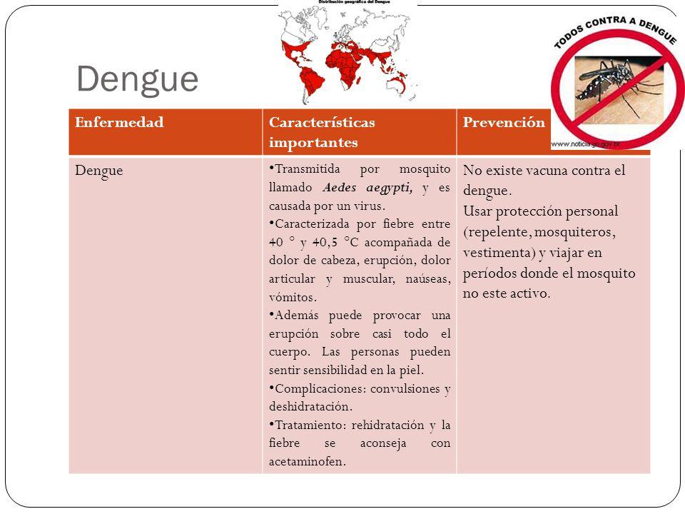 Dengue Enfermedad Características importantes Prevención Dengue
