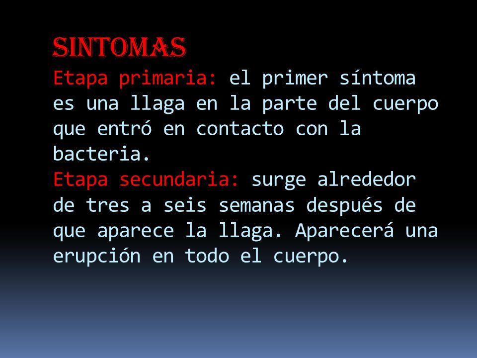 Sintomas Etapa primaria: el primer síntoma es una llaga en la parte del cuerpo que entró en contacto con la bacteria.