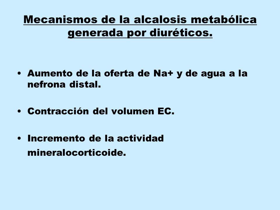 Mecanismos de la alcalosis metabólica generada por diuréticos.