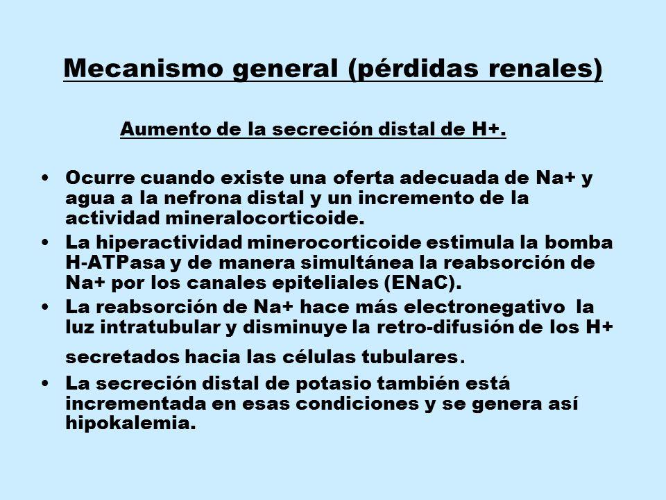 Mecanismo general (pérdidas renales)