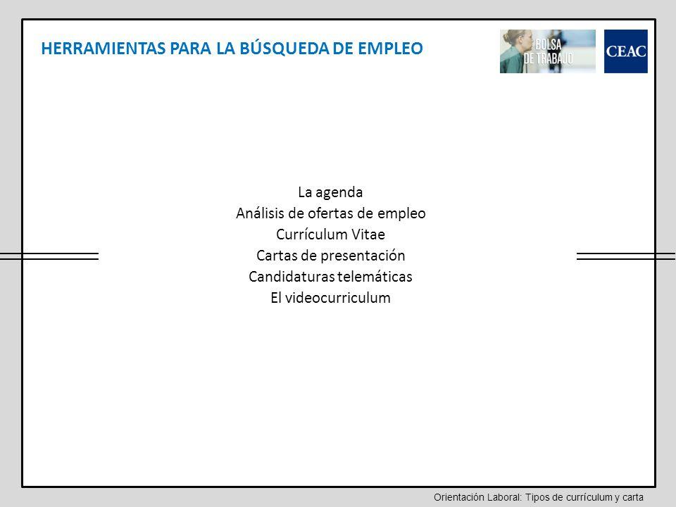 Tipos de currículum y carta - ppt video online descargar