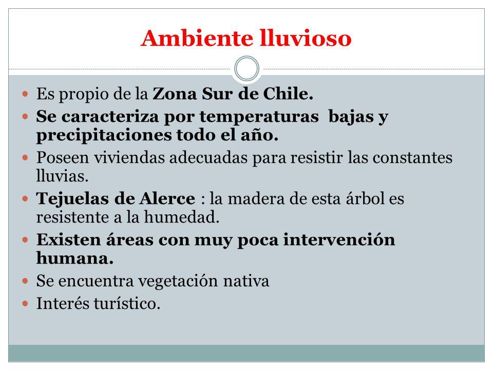 Ambiente lluvioso Es propio de la Zona Sur de Chile.