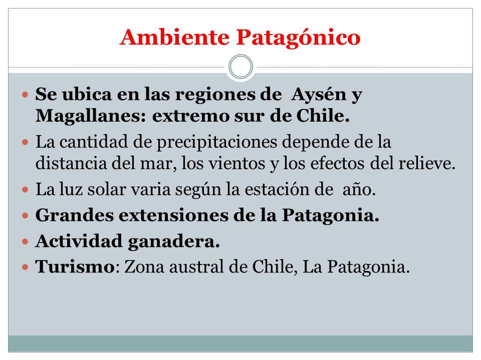 Ambiente Patagónico Se ubica en las regiones de Aysén y Magallanes: extremo sur de Chile.